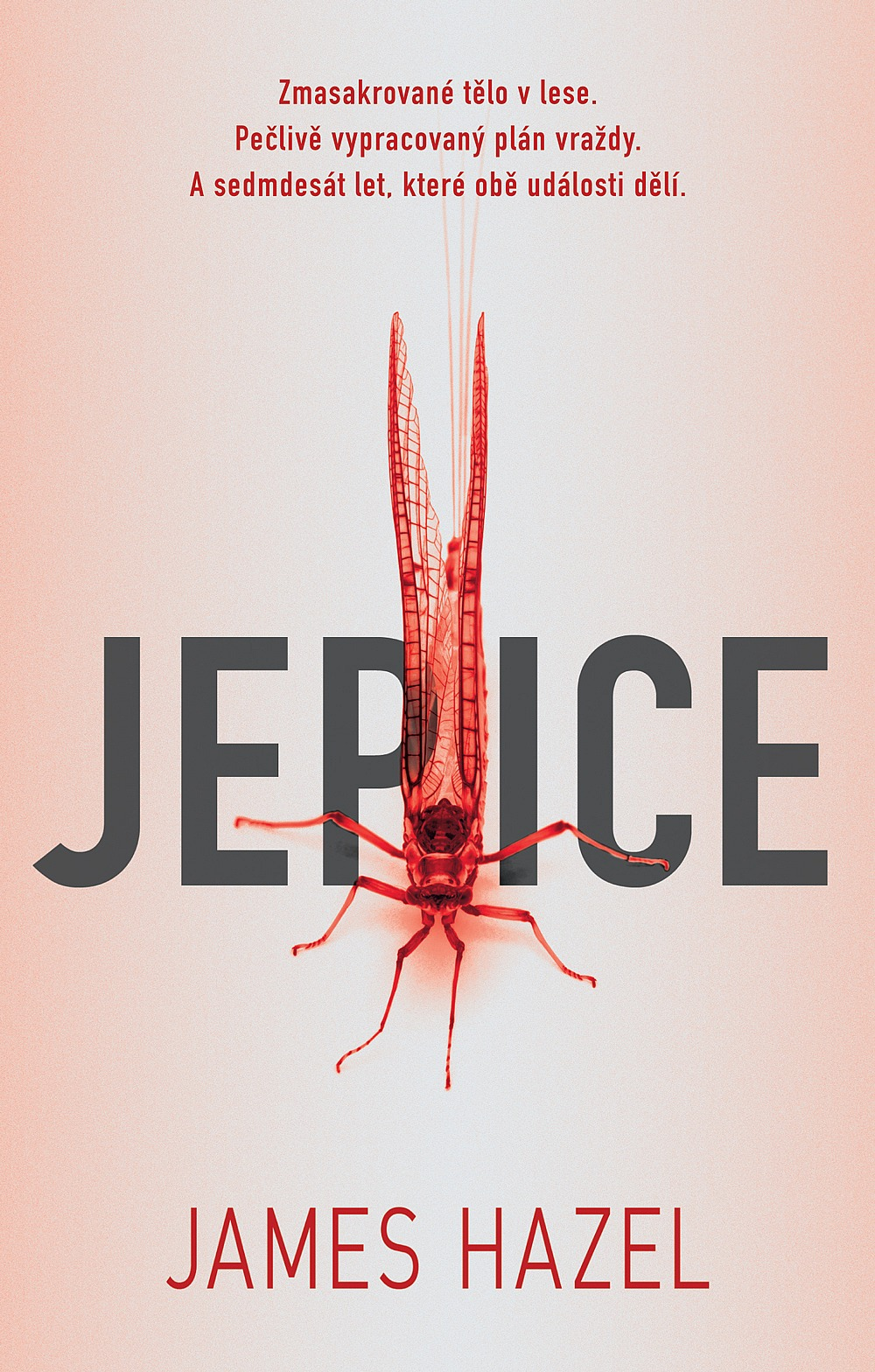 big_jepice-Y55-365461