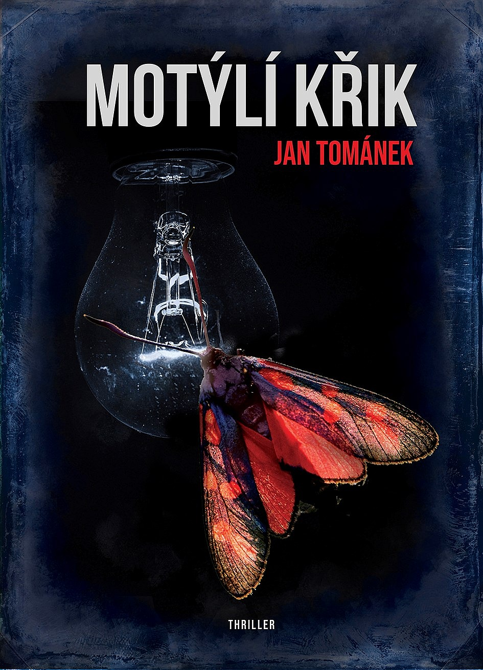 big_motyli-krik-4tM-386386