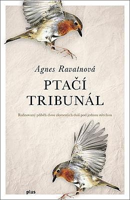 big_ptaci-tribunal-d1r-369672