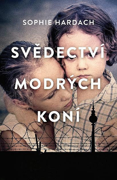 big_svedectvi-modrych-koni-2Dq-421790