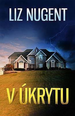 big_v-ukrytu-cNY-365577